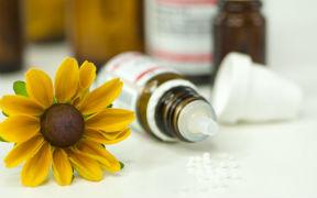 Curso Básico a distancia de Homeopatía