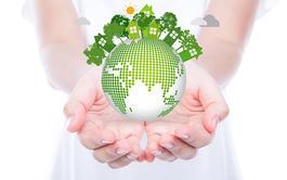 Pack de 2 Cursos en línea (Online) de Gestión de Calidad ISO 9001 y Gestión Ambiental 14001