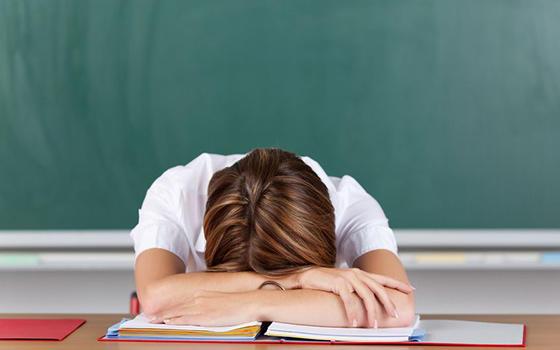 Curso a distancia del Educador ante el Fracaso Escolar (Diploma Universitario)