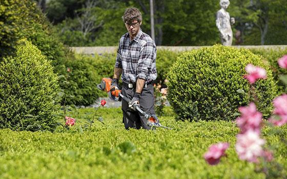 Curso online de Jardinero Profesional