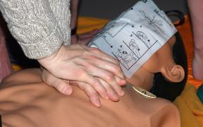 Curso en línea (Online) de RCP (Reanimación Cardiopulmonar) Básica y Primeros Auxilios