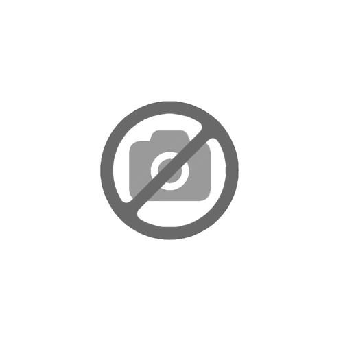 Máster en Programación Profesional con Python. MPP